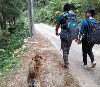 Hill Trekking